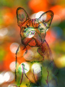 French bulldog animal art print, bokeh effect watercolor Orange Green Disco Frenchie dog, 8x10, A3 - Dog portraits by Oscar Jetson