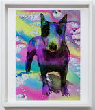 English Bull Terrier art print, home decor,colorful watercolor print Pink Aqua marine,yellow wall art, dog art, animal painting,English Bull - Dog portraits by Oscar Jetson - 5