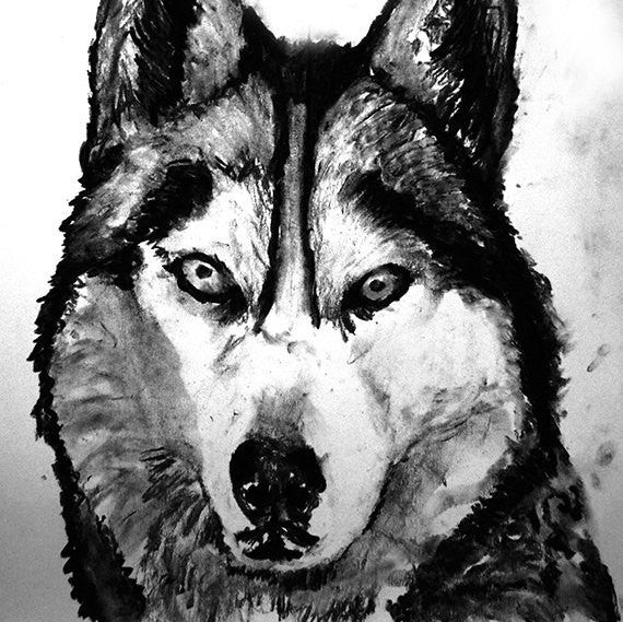 Husky dog art print, black and white, Husky dog,charcoal drawing,Husky portrait wall art print home decor Black Husky print - Dog portraits by Oscar Jetson