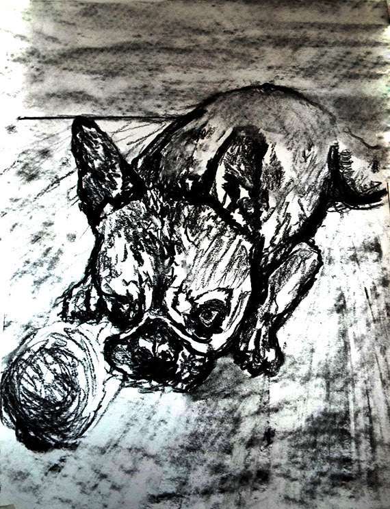 French Bulldog dog art print, black and white, Frenchie dog,charcoal drawing, Frog dog portrait, wall art print, Black French bulldog print - Dog portraits by Oscar Jetson