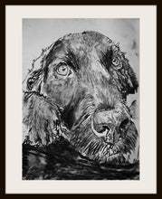 Load image into Gallery viewer, Black Labrador Charcoal art print black and white lab dog gift labrador dog drawing art print - Dog portraits by Oscar Jetson