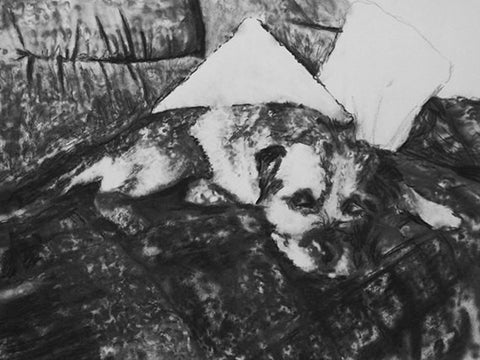 Border Terrier art, terrier wall art,Border mom gift, Border Terrier print, dog drawing, charcoal art, charcoal dog, dog lover, dog gift - Dog portraits by Oscar Jetson