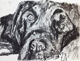 Black Lab dog art Charcoal drawing print lab dog wall art gift labrador dog drawing art print - Dog portraits by Oscar Jetson