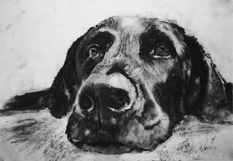 Labrador wall art, Black Lab print, Lab mom, Labrador owner gift, Lab lover, Labrador decor, Lab drawing giclee print, Black Lab gift idea - Dog portraits by Oscar Jetson