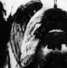 Load image into Gallery viewer, Bulldog charcoal drawing giclee print of Original charcoal bulldog portrait, English bulldog gift ,pet,black and white drawing bulldog print - Dog portraits by Oscar Jetson