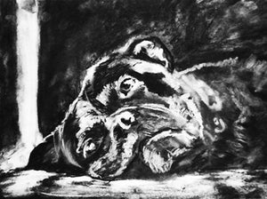 Boxer Dog art print, charcoal boxer dog, lazy boxer dog, dog drawing, giclee print, dog portrait, Boxer dog gift , Boxer charcoal drawing - Dog portraits by Oscar Jetson