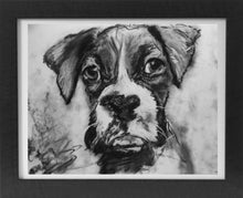 Load image into Gallery viewer, Boxer Dog Puppy print, charcoal boxer drawing, Boxer dog gift, giclee print,dog portrait, boxer dog gift ,drawing boxer print - Dog portraits by Oscar Jetson