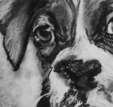 Boxer Dog Puppy print, charcoal boxer drawing, Boxer dog gift, giclee print,dog portrait, boxer dog gift ,drawing boxer print - Dog portraits by Oscar Jetson