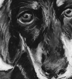 Dachshund charcoal drawing giclee print of Original charcoal Dachshund portrait, Dachshund gift ,pet,black and white drawing Dachshund print - Dog portraits by Oscar Jetson - 3
