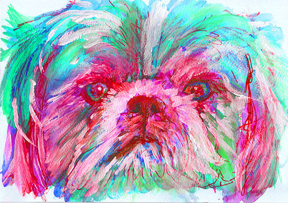 Shih Tzu owner Gift, Shih Tzu Dog Painting, Aquamarine PInk and Red Shihtzu picture ,Shihtzu art print,Colorful Dog art, Watercolor Shih Tzu - Dog portraits by Oscar Jetson