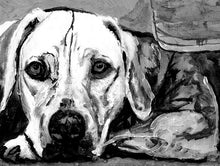 Load image into Gallery viewer, Weimaraner Weim, Grey ghost dog painting wall art print black and white dog watercolor painting portrait,  art home decor Weimaraner print - Dog portraits by Oscar Jetson - 1
