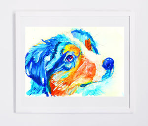 Australian Shepherd Dog painting Aussie dog Oz shepherd gift idea, Abstract colorful Australian shepherd dog wall art print - Dog portraits by Oscar Jetson