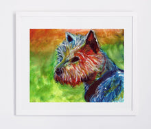 Load image into Gallery viewer, Yorkshire terrier art print, Yorkie dog painting, Yorkshire terrier Gift, Dog art 8x10 yorkie, 11x14 Yorkie art, Yorkshire terrier wall art - Dog portraits by Oscar Jetson