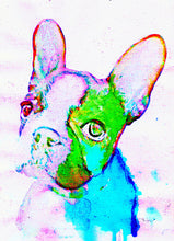 Load image into Gallery viewer, French Bulldog Painting print, Forest green and aqua marine, Bulldog,watercolor art print,Gift for French bulldog owner,French bulldog print - Dog portraits by Oscar Jetson