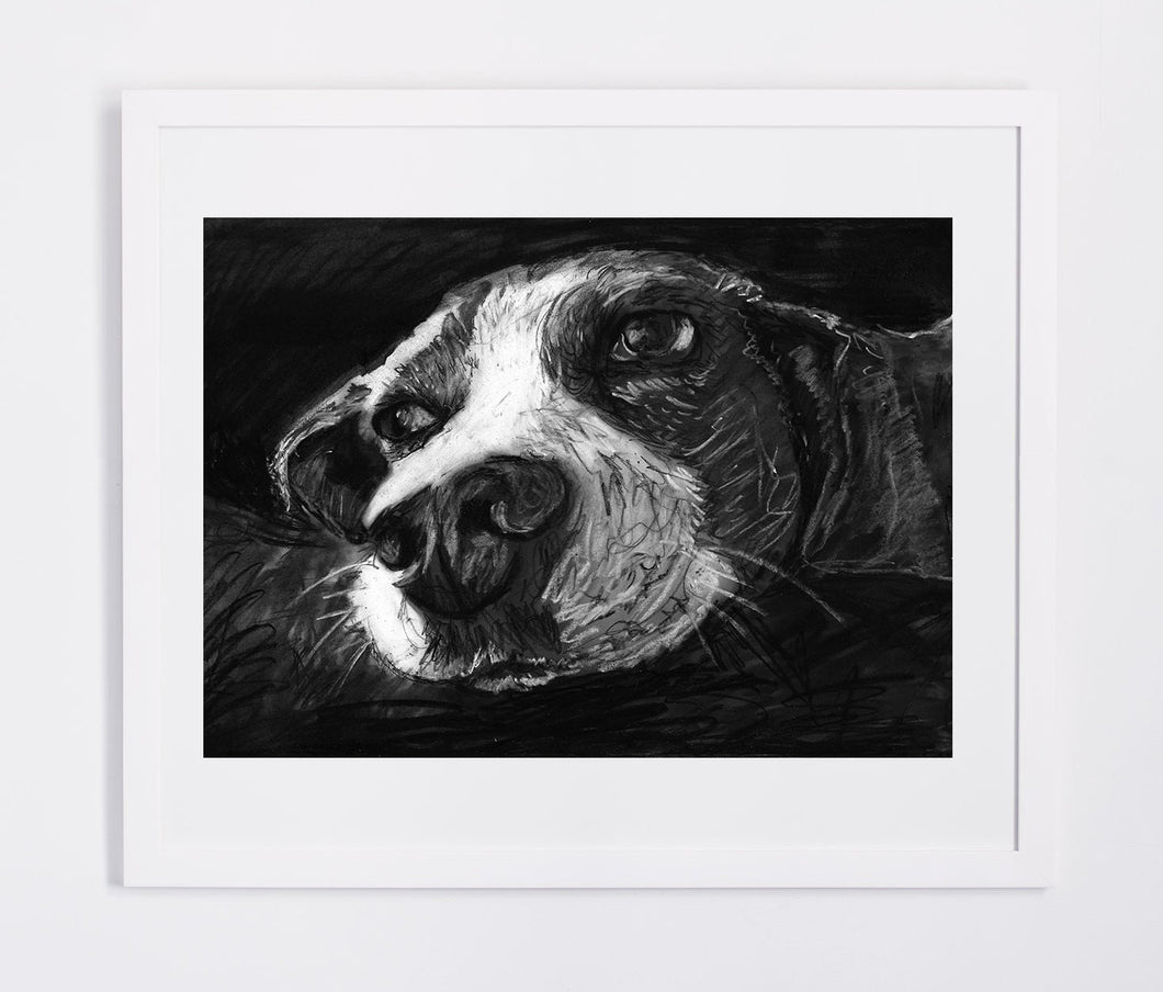 Beagle drawing, Charcoal Beagle art print,Beagle owner gift idea,Beagle picture,Beagle artwork, Beagle face, Beagle portrait,Beagle print - Dog portraits by Oscar Jetson