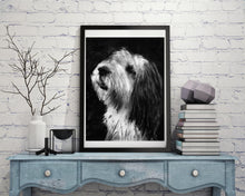 Load image into Gallery viewer, Old English Sheepdog Gift, dog drawing, Charcoal art portrait, sheep dog, sheepdog picture,old english sheep dog gift wall art print - Dog portraits by Oscar Jetson