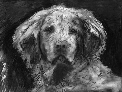 Brittany Spaniel Print ,Charcoal brittany spaniel dog charcoal drawing, Dog Art,Brittany spaniel portrait  gift idea spaniel wall art print - Dog portraits by Oscar Jetson - 1