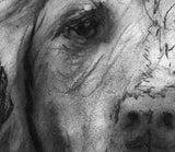 Brittany Spaniel Print ,Charcoal brittany spaniel dog charcoal drawing, Dog Art,Brittany spaniel portrait  gift idea spaniel wall art print - Dog portraits by Oscar Jetson - 5