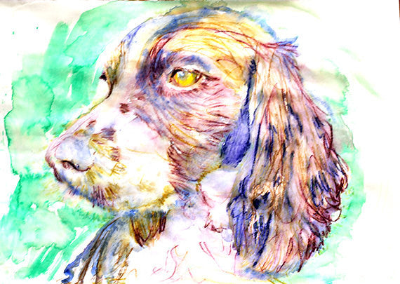 Springer Spaniel dog Painting Purple Blue and Green watercolor art print - Dog portraits by Oscar Jetson