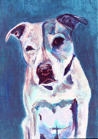 Staffordshire bull terrier ,dog wallart print, blue staffie Portrait, blue Print of acrylic staffy dog painting, staffie owner gift dog - Dog portraits by Oscar Jetson - 1