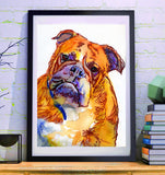 English Bulldog art print Orange Yellow watercolor painting British bulldog art print - Dog portraits and dog gifts