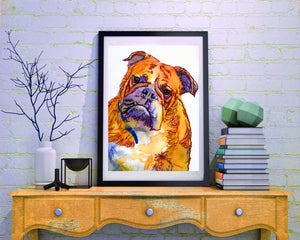 English Bulldog art print Orange Yellow watercolor painting British bulldog art print - Dog portraits by Oscar Jetson