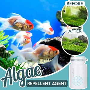 Algae Repellent Agent Home Improvement outdoorpinata