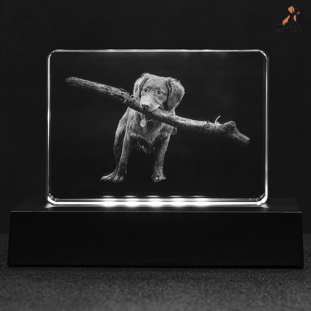 Pup on Demand ® Crystal Cubes - Pup n Shop