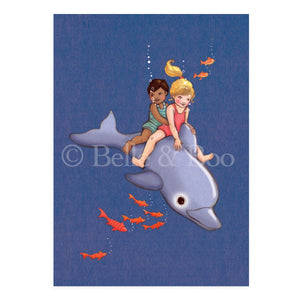 Dolphin Adventure Postcard