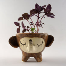 Load image into Gallery viewer, Elephant Ceramic Planter Pot