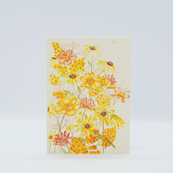 hello petal shades of sunshine plantable greeting cards available to shop online at milly and marr melbourne, australian made gifts. Features yellow butterflies and daisy's and  blank inside.