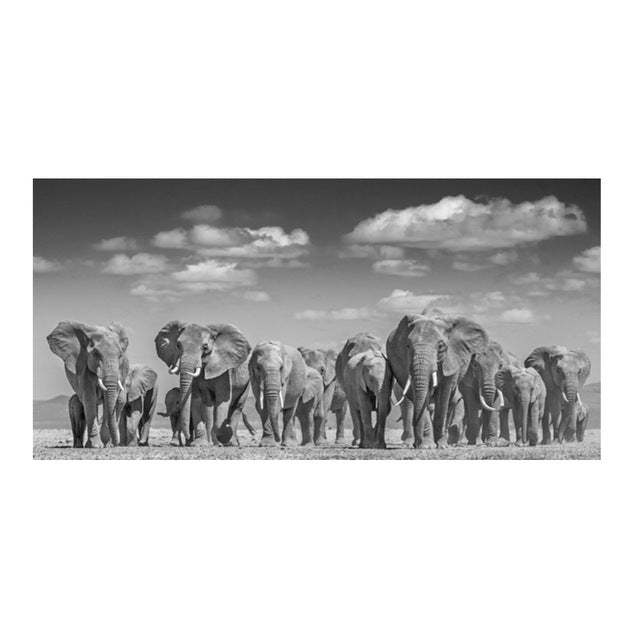 Elephant Herd Canvas Print