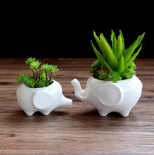 Load image into Gallery viewer, Elephant Ceramics Planter