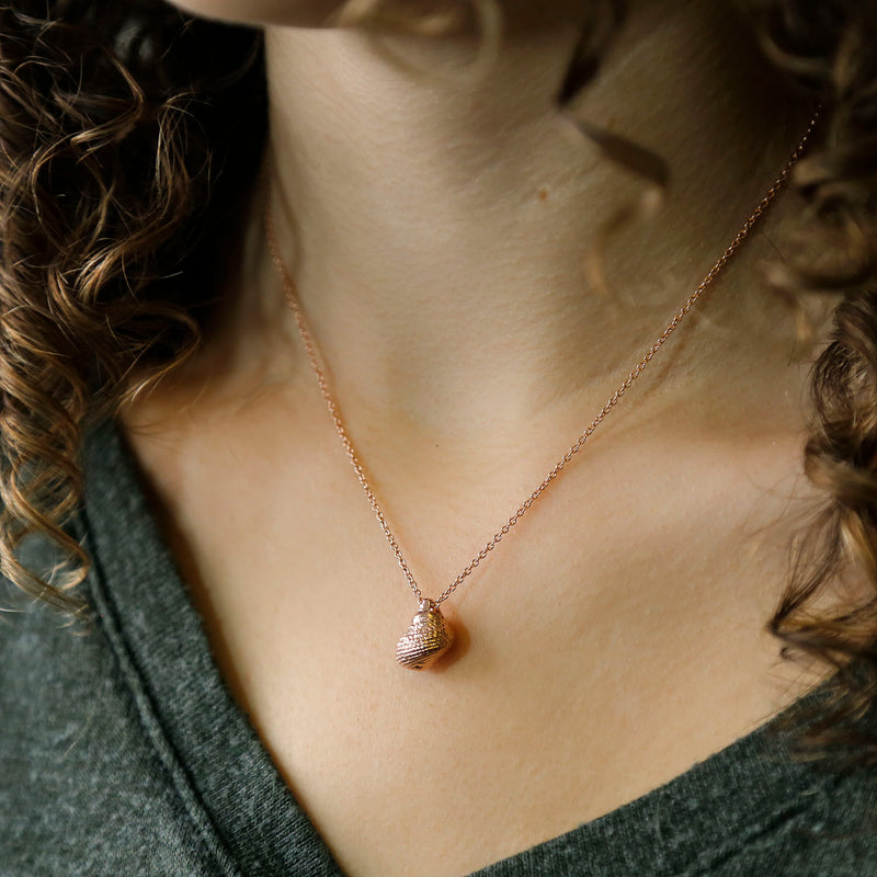 Sterling Silver Rose Gold Nutmeg Shell Necklace