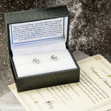 Sterling Silver and Meteorite Stud Earrings