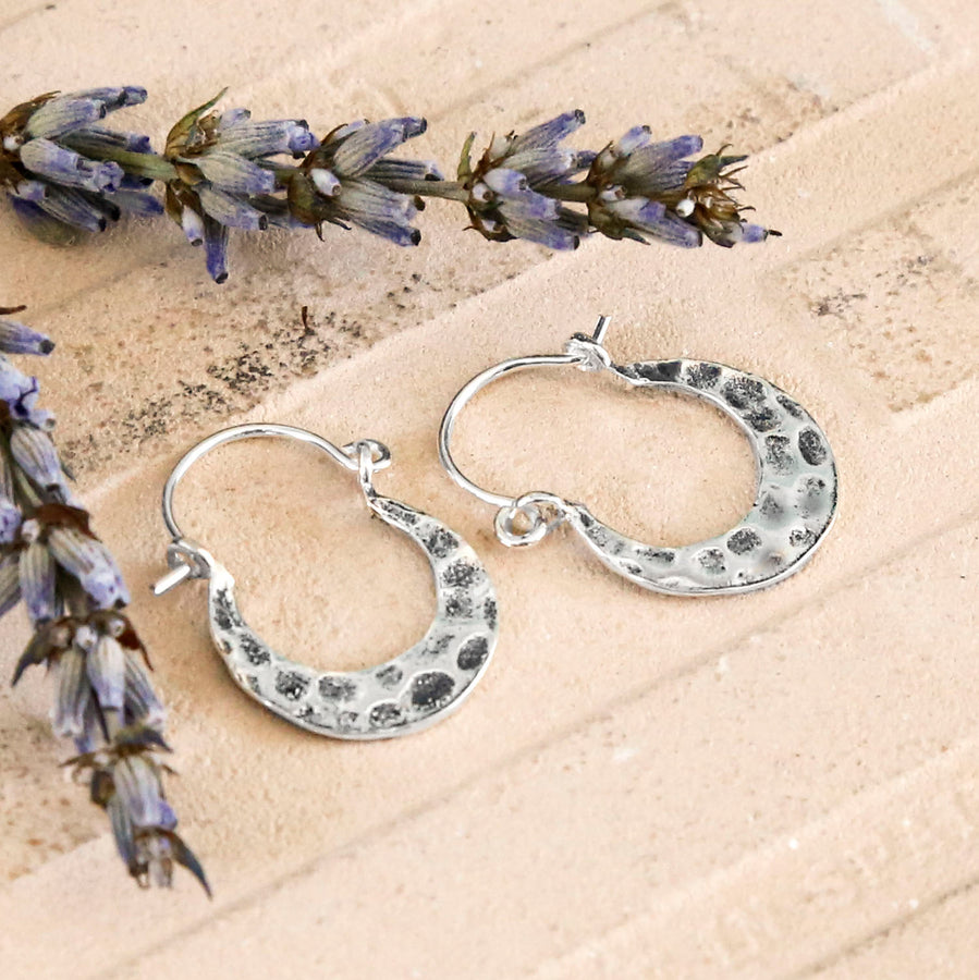Silver Hammered Hoop with a Horse Shoe Shape and Oxidised Detail, on a terracotta background with Dried Lavender