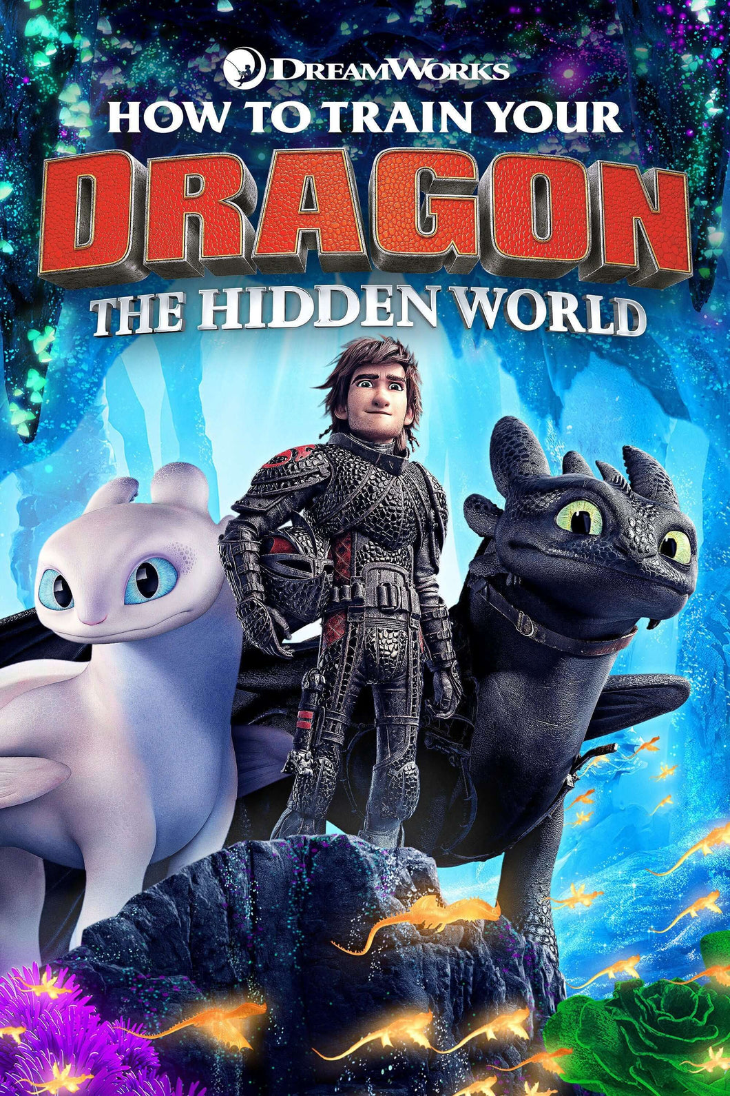How to Train Your Dragon 3: The Hidden World | HD Movies Anywhere Code Ports to Vudu, iTunes - Movie Sometimes