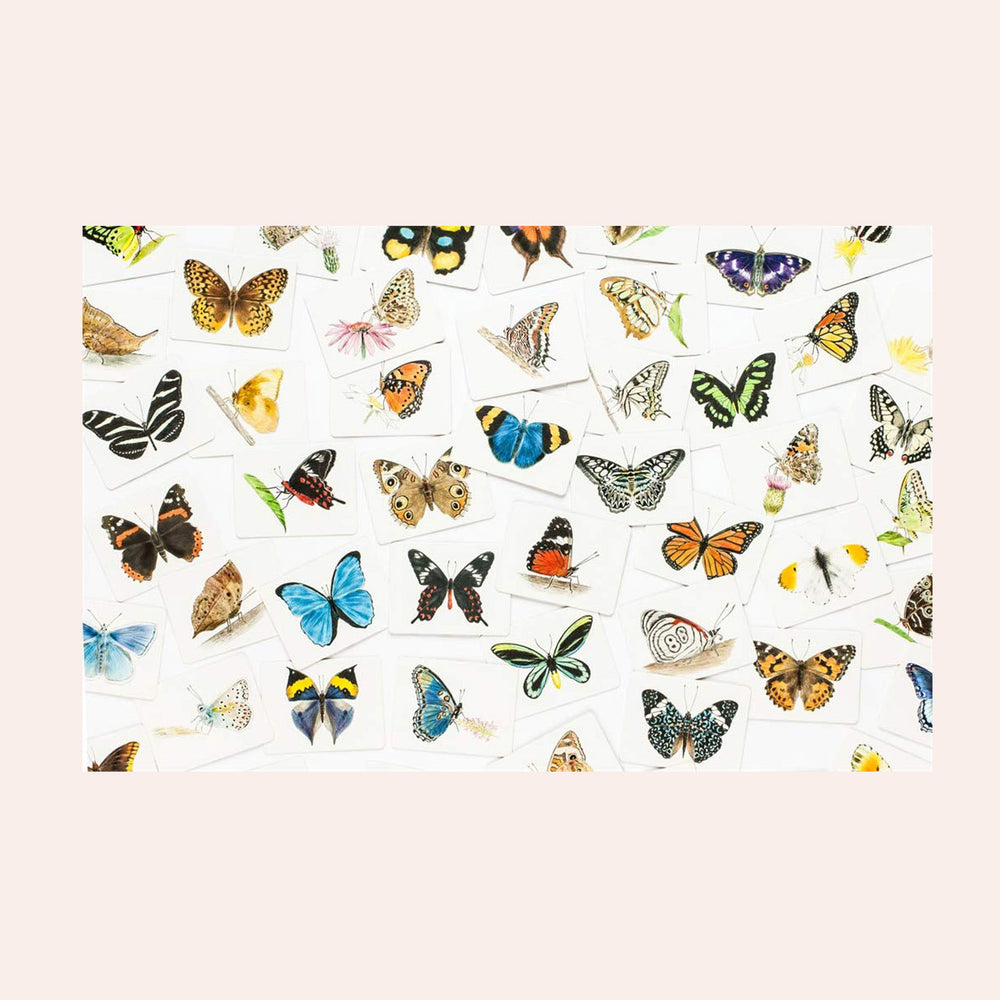Load image into Gallery viewer, Butterfly Wings: A Matching Game