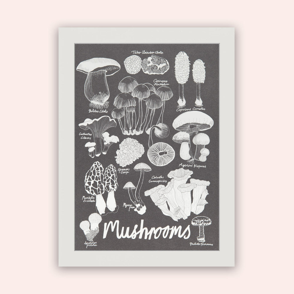 Load image into Gallery viewer, Mushroom Chart in wood frame