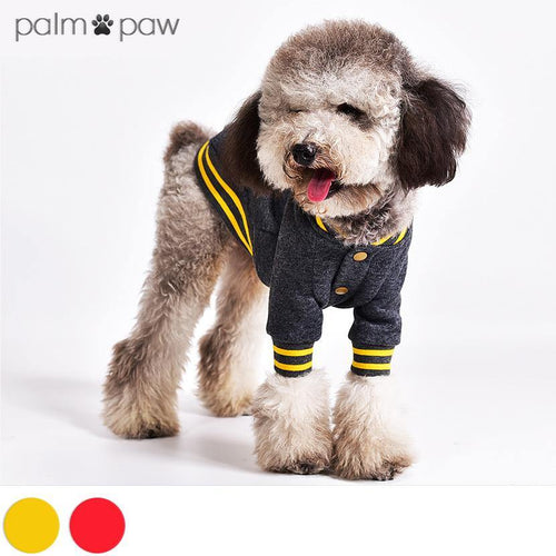 Classic Dog Baseball Varsity Jacket - Palm Paw