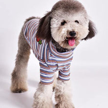 Load image into Gallery viewer, Stand Collar Striped Dog T-shirt - Palm Paw