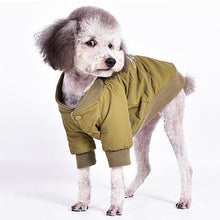 Load image into Gallery viewer, Dog Bomber Jacket - Palm Paw
