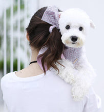 Load image into Gallery viewer, Matching Dog Bandana and Hair Ribbon - Palm Paw