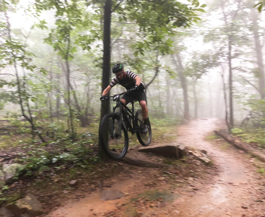 2019 Cannondale Jekyll 29 - Contender Bicycles