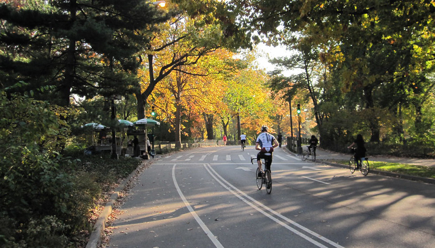 Central Park - Contender Bicycles