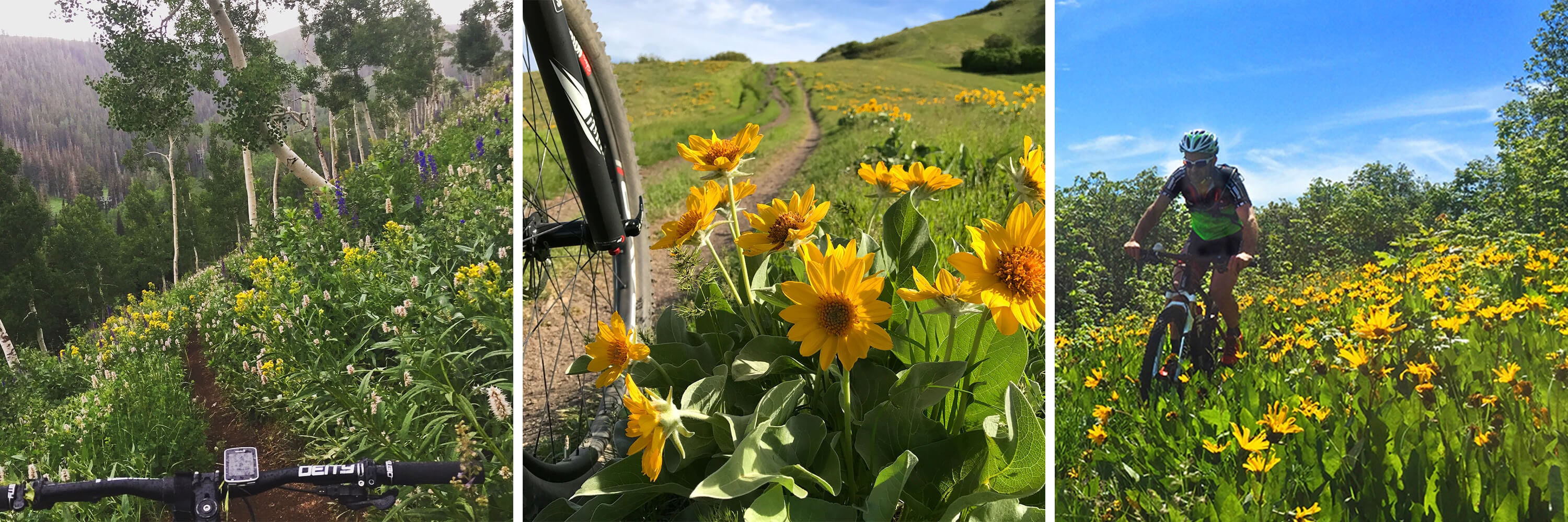 Contender Bicycles Spring Fever Photo Contest