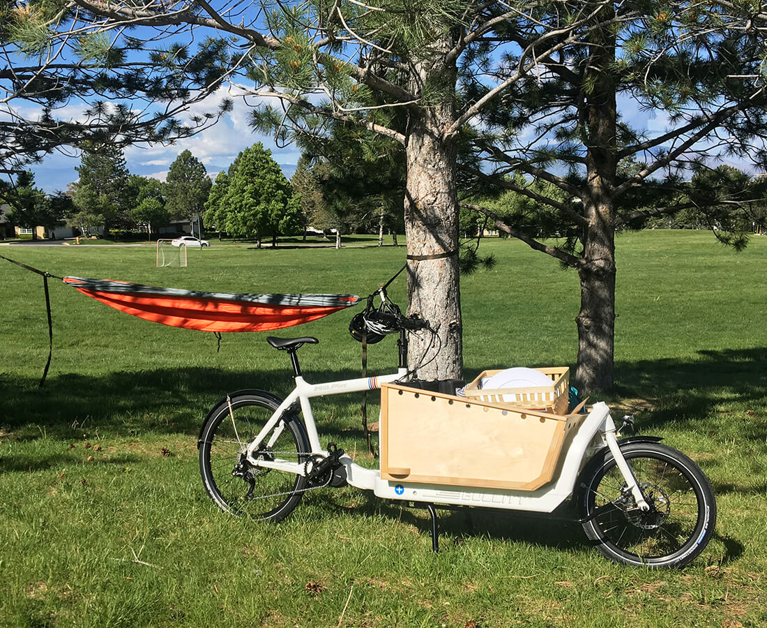 Larry vs Harry Electric Cargo Bike Contender Bicycles