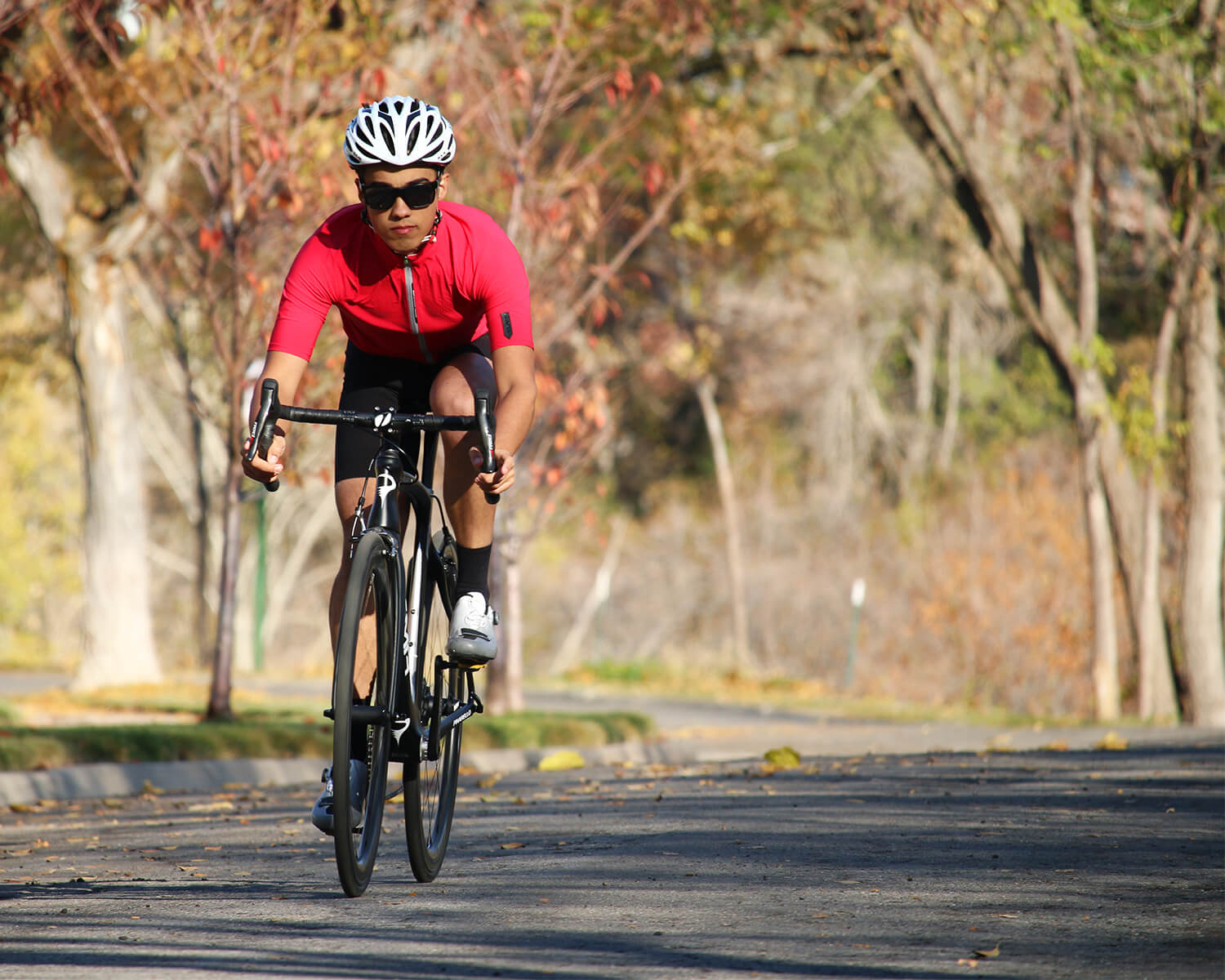 Q36.5 Cycling Clothing - Contender Bicycles
