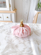 Load image into Gallery viewer, Velvet Pumpkin Pack in 'Enchanted'