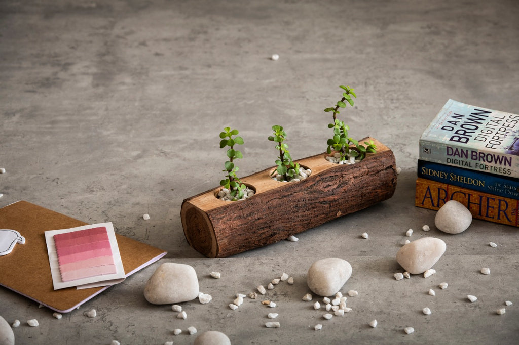 Wooden Log Planter, Desk Planter